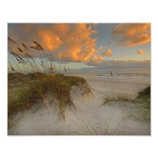 Beautiful Sand Dunes in Daytona Beach, FL Photo Print
