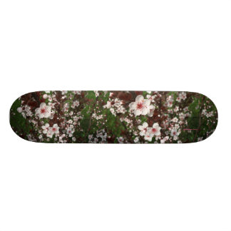 Beautiful Sandcherry Skateboard