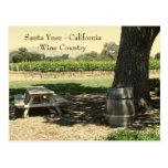 Beautiful Santa Ynez/Wine Country Postcard!