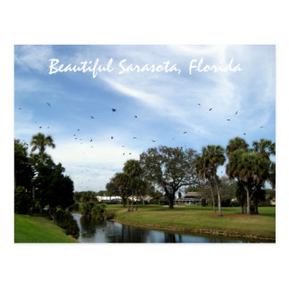 Beautiful Sarasota, Florida Postcard