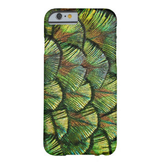 Beautiful Scalloped Peacock Feathers Barely There iPhone 6 Case