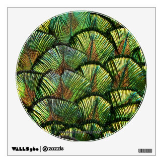 Beautiful Scalloped Peacock Feathers Wall Graphics