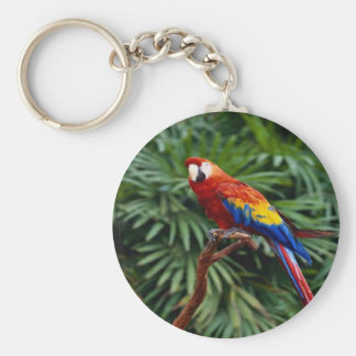 Beautiful scarlet colored mcow, keychain