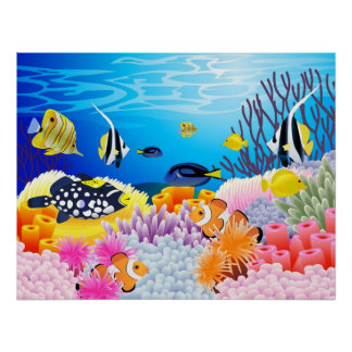 Beautiful sea life poster