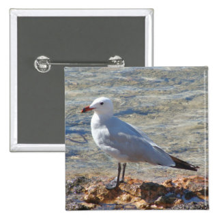 Beautiful Seagull - Button