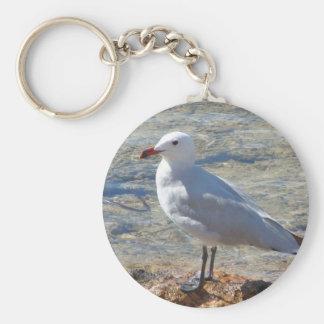 Beautiful Seagull - Keychain