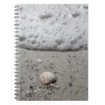 Beautiful seashell on the beach notebook