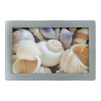 Beautiful Seashells, Summer, Beach, Shells Belt Buckle
