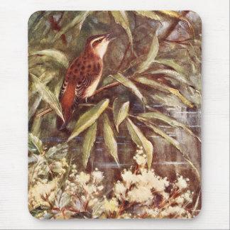Beautiful Sedge Warbler Art Mouse Pad