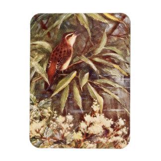 Beautiful Sedge Warbler Art Vinyl Magnet