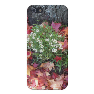 Beautiful Sheffield Village of Oakland Covers For iPhone 5