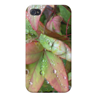 Beautiful Sheffield Village of Oakland iPhone 4/4S Cover