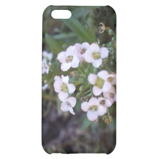 Beautiful Sheffield Village of Oakland Case For iPhone 5C