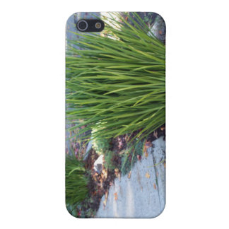 Beautiful Sheffield Village of Oakland iPhone 5 Cover