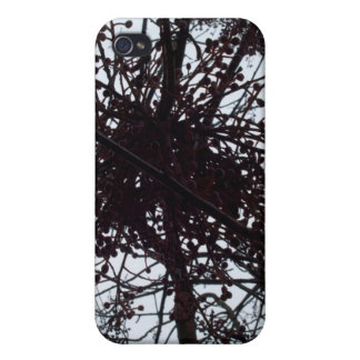 beautiful Sheffield Village of Oakland iPhone 4/4S Cases