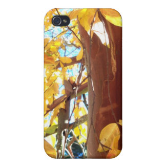 Beautiful Sheffield Village of Oakland Cover For iPhone 4