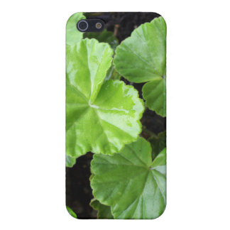 beautiful Sheffield Village of Oakland Cases For iPhone 5