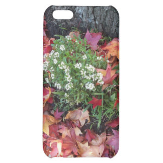 Beautiful Sheffield Village of Oakland iPhone 5C Cases