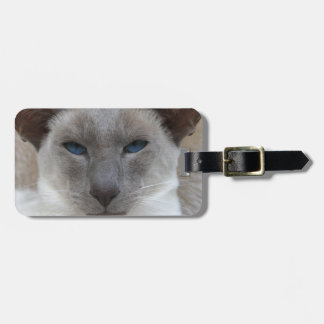 Beautiful Siamese Cat Tags For Luggage