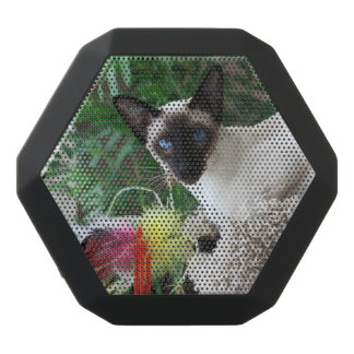 Beautiful Siamese Cat Playing With Toy Black Bluetooth Speaker