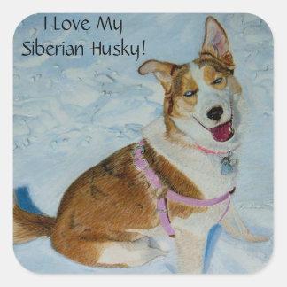 Beautiful Siberian Husky in Snow Square Sticker