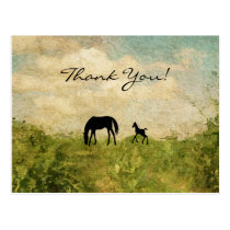 Beautiful Silhouette Mare and Foal Horse Thank You Postcard