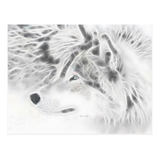 Beautiful Silver Wolf Postcard