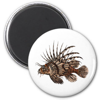 Beautiful & Simple Vintage Lion Fish Magnet