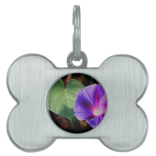 Beautiful Single Morning Glory Flower and Leaf Pet Tag