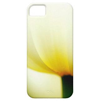 Beautiful Single Tulip iPhone 5 Cases