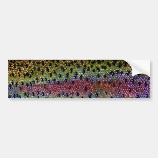 """Beautiful Skin, Rainbow Bronze"" Bumper Sticker"