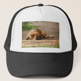 Beautiful Sleeping Dog Trucker Hat