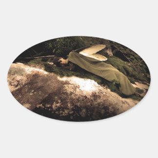 Beautiful Sleeping Wood Fairy Sticker