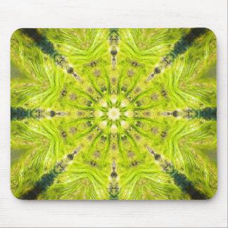 Beautiful Slime Feb 2013 Mouse Pad