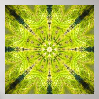 Beautiful Slime Feb 2013 Posters