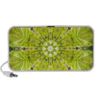 Beautiful Slime Feb 2013 Travel Speaker