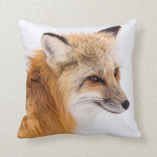 Beautiful Sly Fox Pillow
