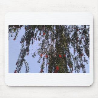 Beautiful small red flowers on a tree branch mousepad