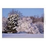 Beautiful Snow Scene Photo Card
