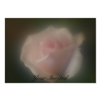 Beautiful Soft Focus Lens Pink Rose Your Invited Card