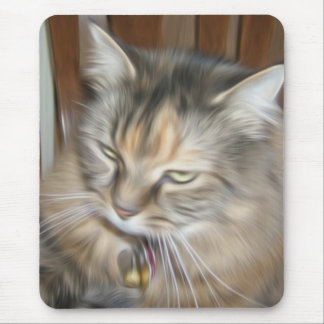 Beautiful soft pain maine coon cat mouspad mouse pad