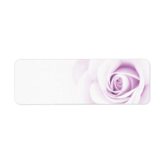 Beautiful soft pale purple rose flower floral label