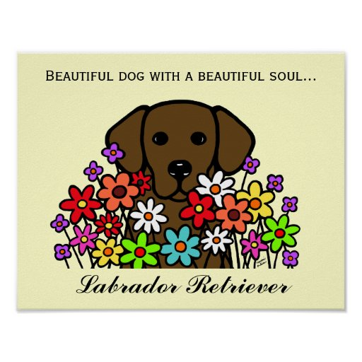 Beautiful Soul Chocolate Labrador Illustration Poster