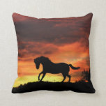 Beautiful Southwestern Colors Horse and Sunset Pillows