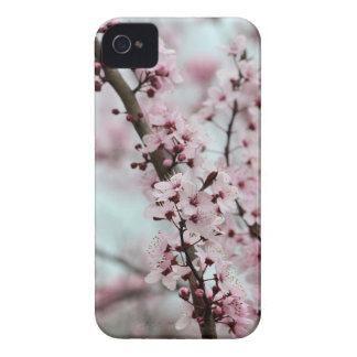 Beautiful Spring Cherry Blossom iPhone 4 Case-Mate Case