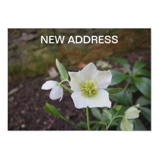 "Beautiful Spring Flower New Address 5"" X 7"" Invitation Card"