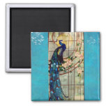 Beautiful Stained Glass Peacock 2 Inch Square Magnet