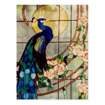 Beautiful Stained Glass Peacock Postcard