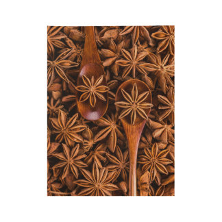 Beautiful star anise spices wood poster