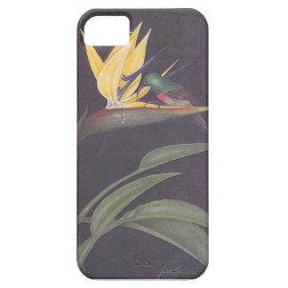 Beautiful strelitzia iphone case